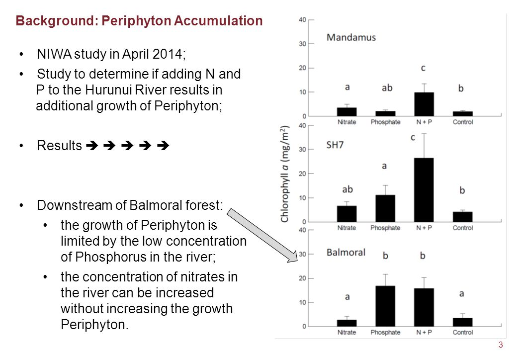 Background: Periphyton Accumulation 3 NIWA study in April 2014; Study to determine if adding N and P to the Hurunui River results in additional growth