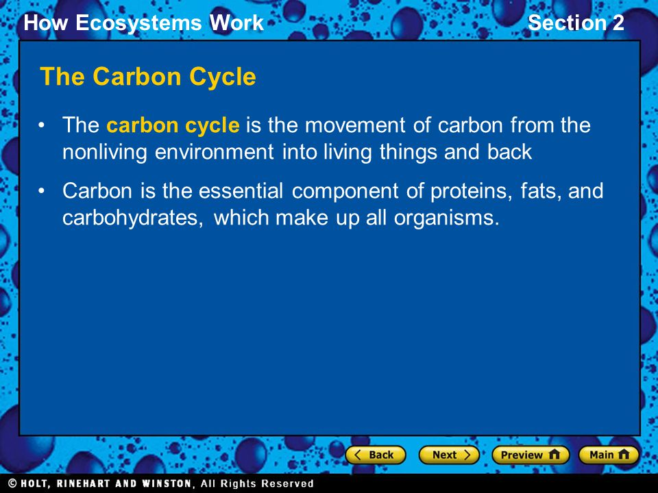 How Ecosystems WorkSection 2 The Carbon Cycle
