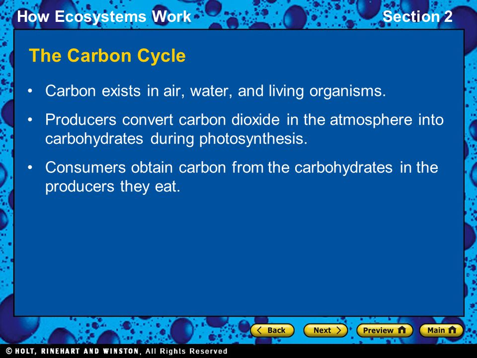 How Ecosystems WorkSection 2 The Phosphorus Cycle