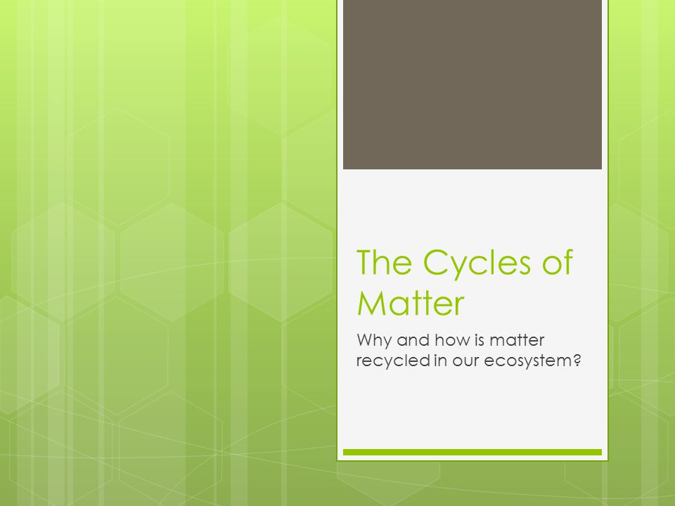 The Cycles of Matter Why and how is matter recycled in our ecosystem?