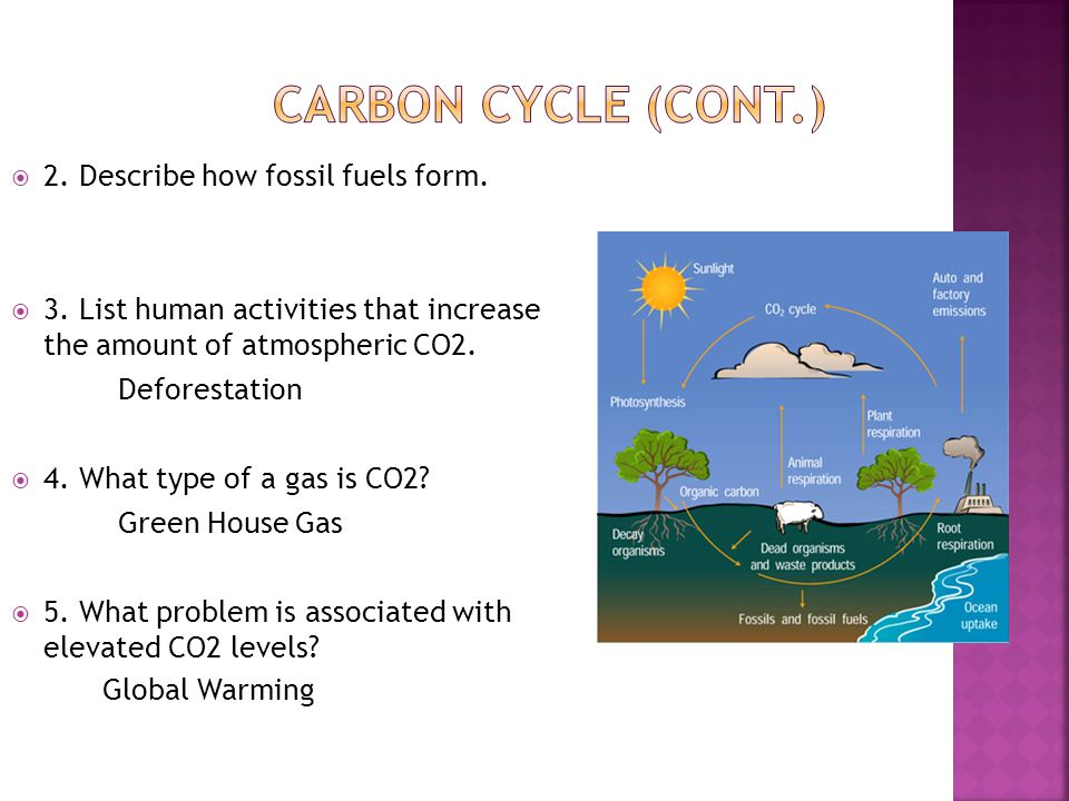  2.Describe how fossil fuels form.  3.