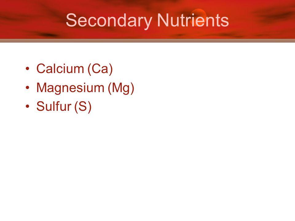 Secondary Nutrients Calcium (Ca) Magnesium (Mg) Sulfur (S)