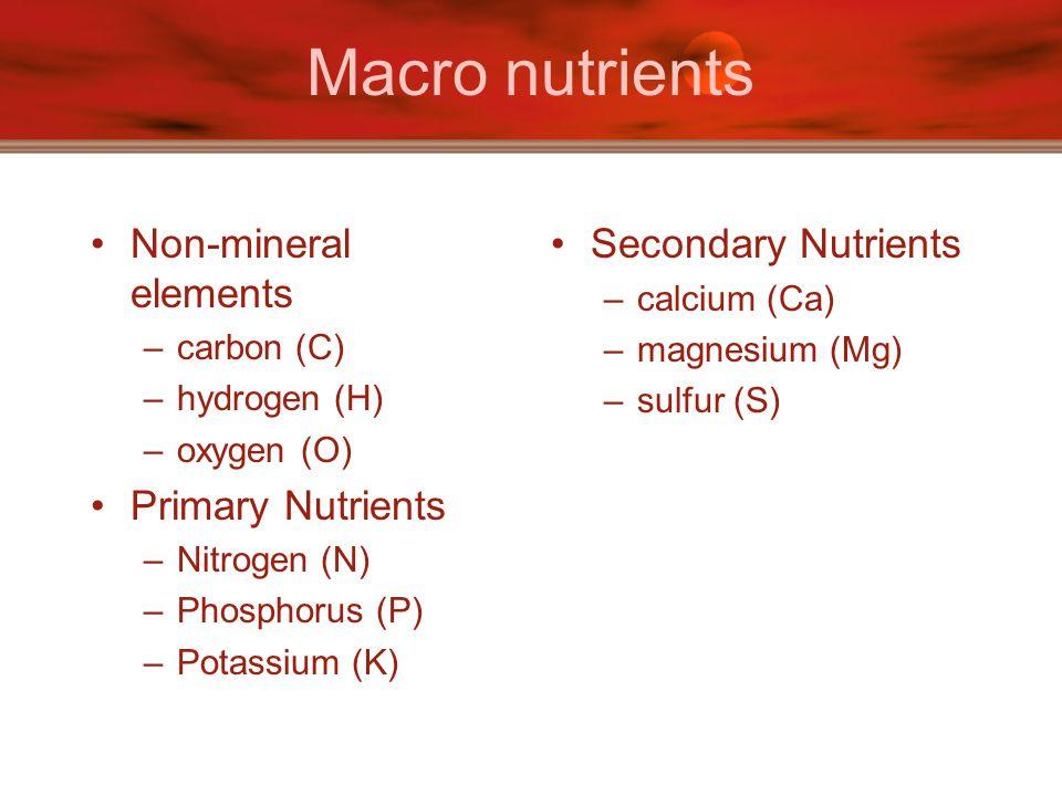 Macro nutrients Non-mineral elements –carbon (C) –hydrogen (H) –oxygen (O) Primary Nutrients –Nitrogen (N) –Phosphorus (P) –Potassium (K) Secondary Nu