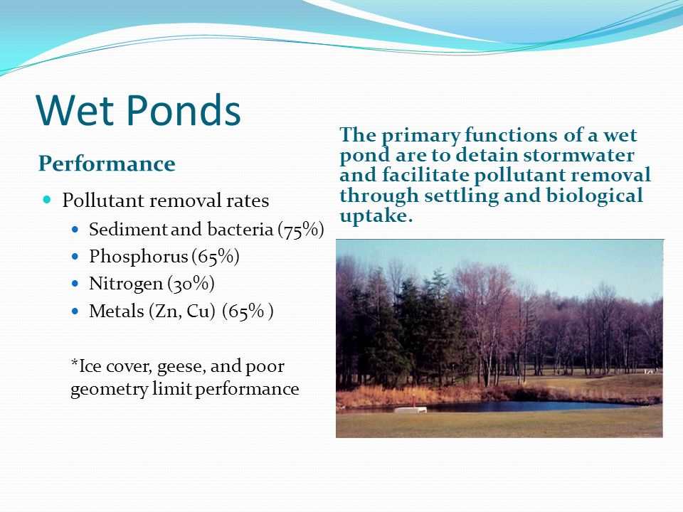 Wet Ponds Performance The primary functions of a wet pond are to detain stormwater and facilitate pollutant removal through settling and biological uptake.