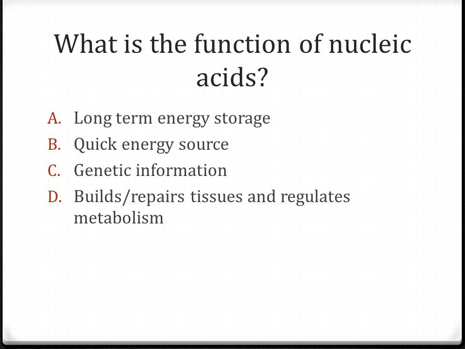 What is the function of nucleic acids. A. Long term energy storage B.