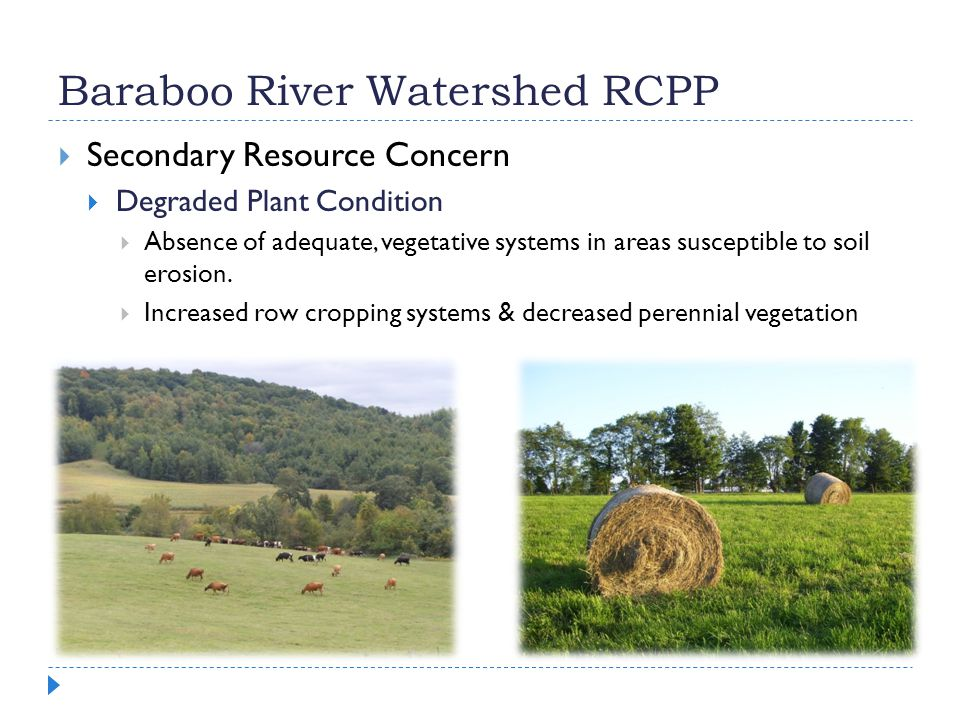 Baraboo River Watershed RCPP  Secondary Resource Concern  Degraded Plant Condition  Absence of adequate, vegetative systems in areas susceptible to soil erosion.