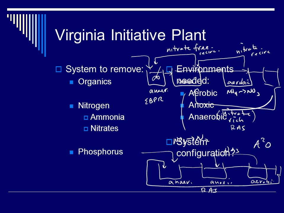 Virginia Initiative Plant  System to remove: Organics Nitrogen  Ammonia  Nitrates Phosphorus  Environments needed: Aerobic Anoxic Anaerobic  System configuration
