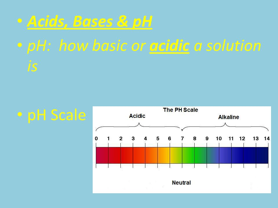 Acids, Bases & pH pH: how basic or acidic a solution is pH Scale