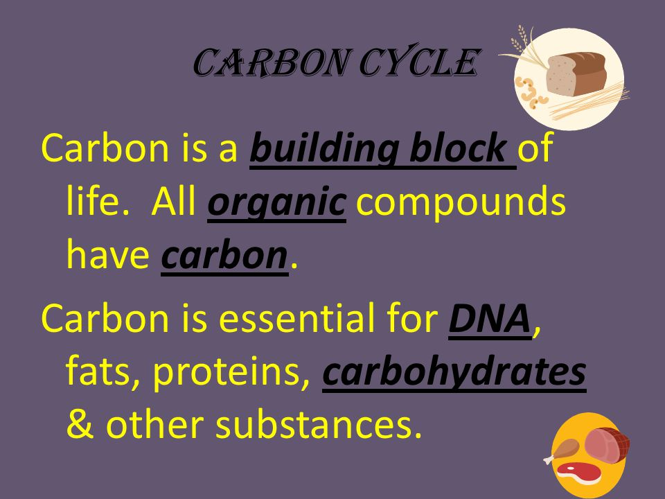 Carbon Cycle Carbon is gas form is carbon dioxide & it's a greenhouse gas that helps to maintain earth's temperature.