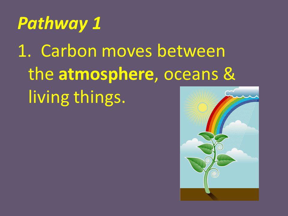 Pathway 1 1. Carbon moves between the atmosphere, oceans & living things.