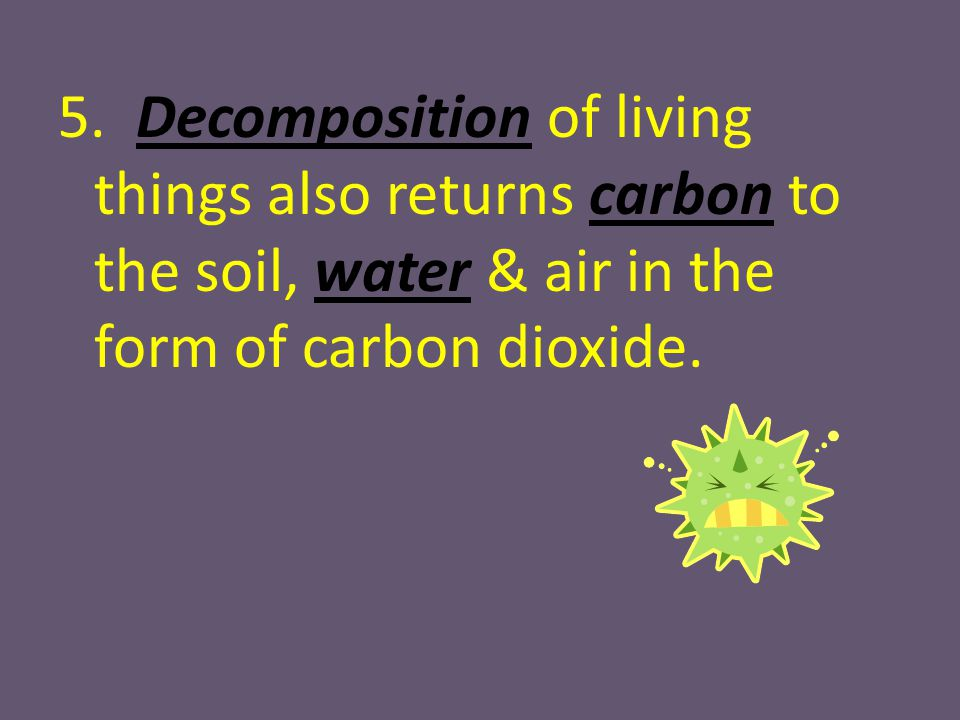 5. Decomposition of living things also returns carbon to the soil, water & air in the form of carbon dioxide.