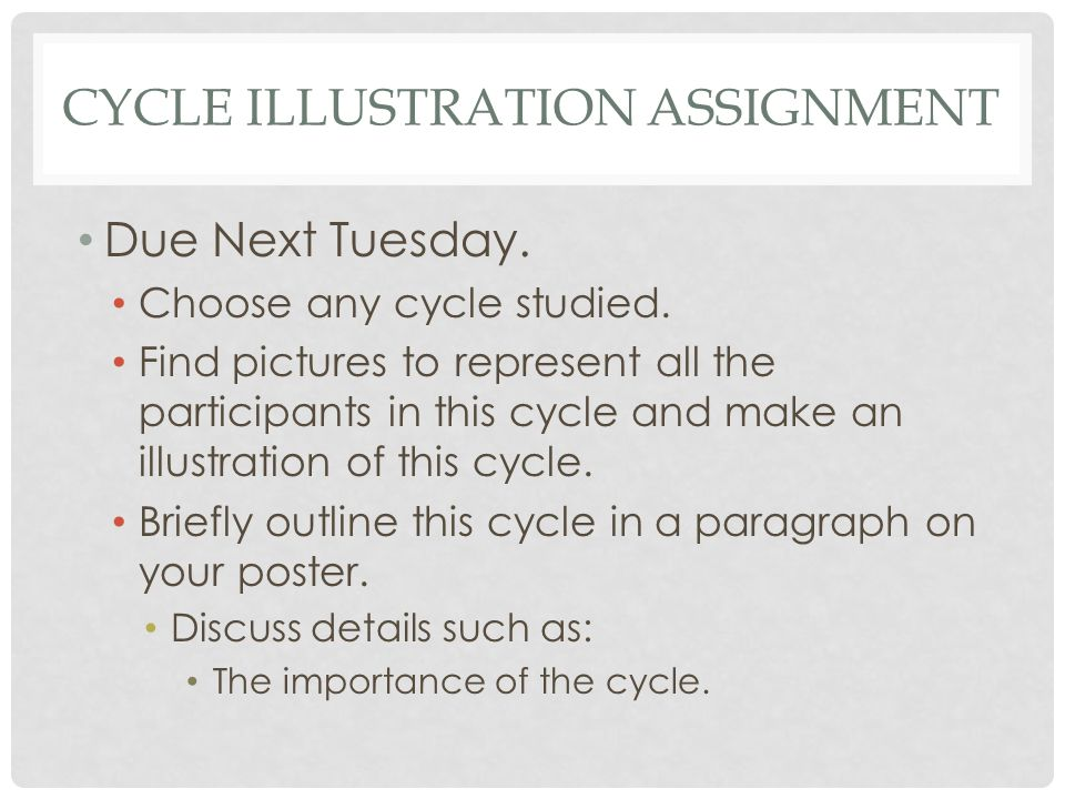 CYCLE ILLUSTRATION ASSIGNMENT Due Next Tuesday.Choose any cycle studied.