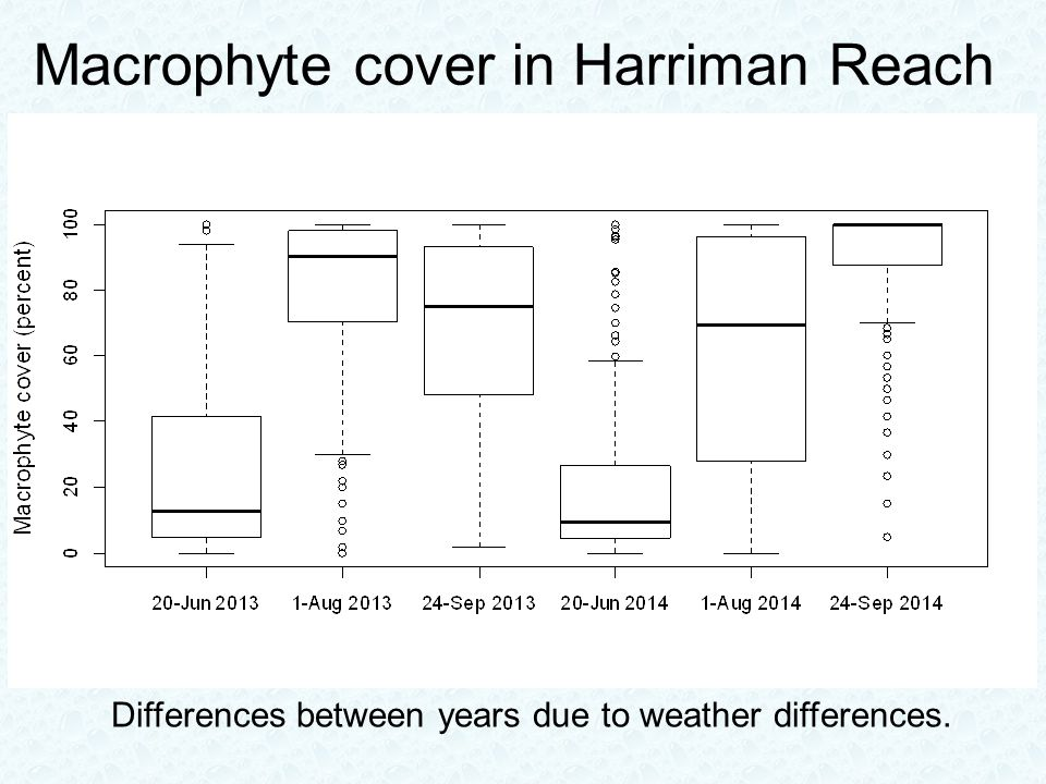 Macrophyte cover in Harriman Reach Differences between years due to weather differences.