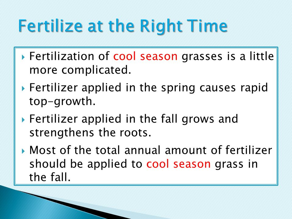  Fertilization of cool season grasses is a little more complicated.