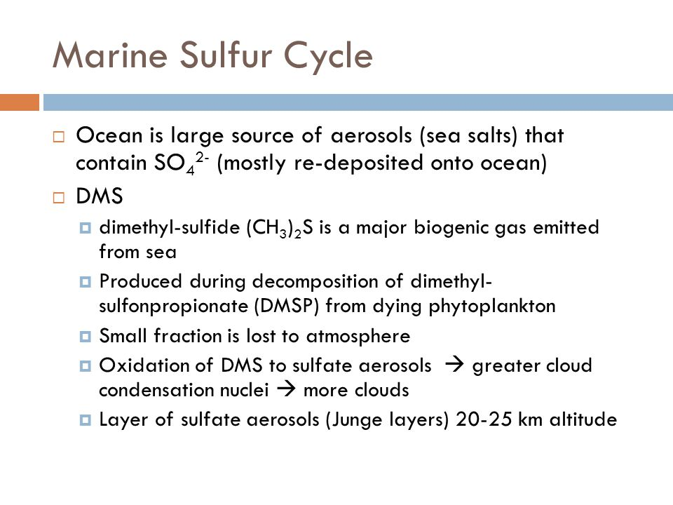Marine Sulfur Cycle  Ocean is large source of aerosols (sea salts) that contain SO 4 2- (mostly re-deposited onto ocean)  DMS  dimethyl-sulfide (CH