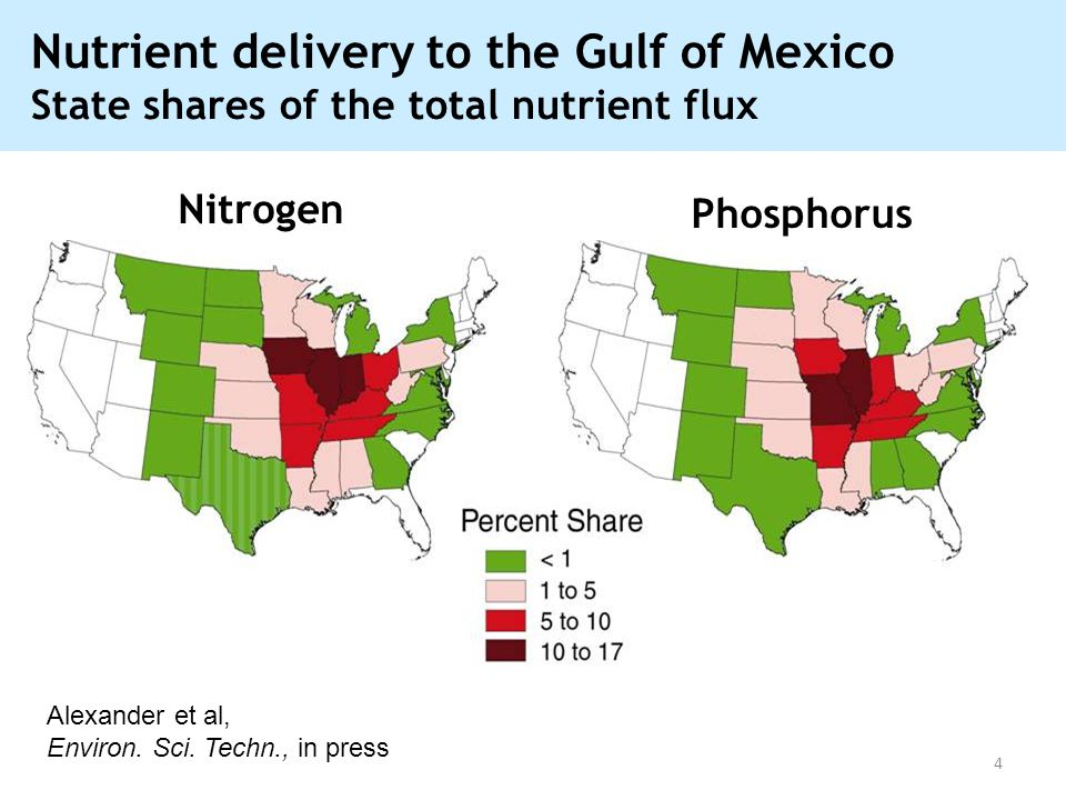 Nutrient delivery to the Gulf of Mexico State shares of the total nutrient flux Nitrogen Phosphorus Alexander et al, Environ. Sci. Techn., in press 4
