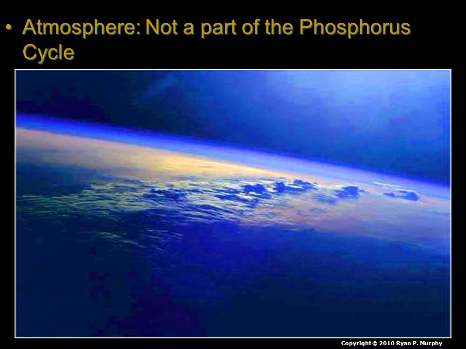 Atmosphere: Not a part of the Phosphorus CycleAtmosphere: Not a part of the Phosphorus Cycle Copyright © 2010 Ryan P. Murphy