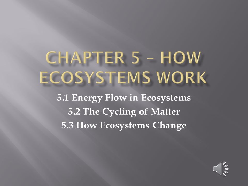 1.Describe the two processes of the carbon cycle.
