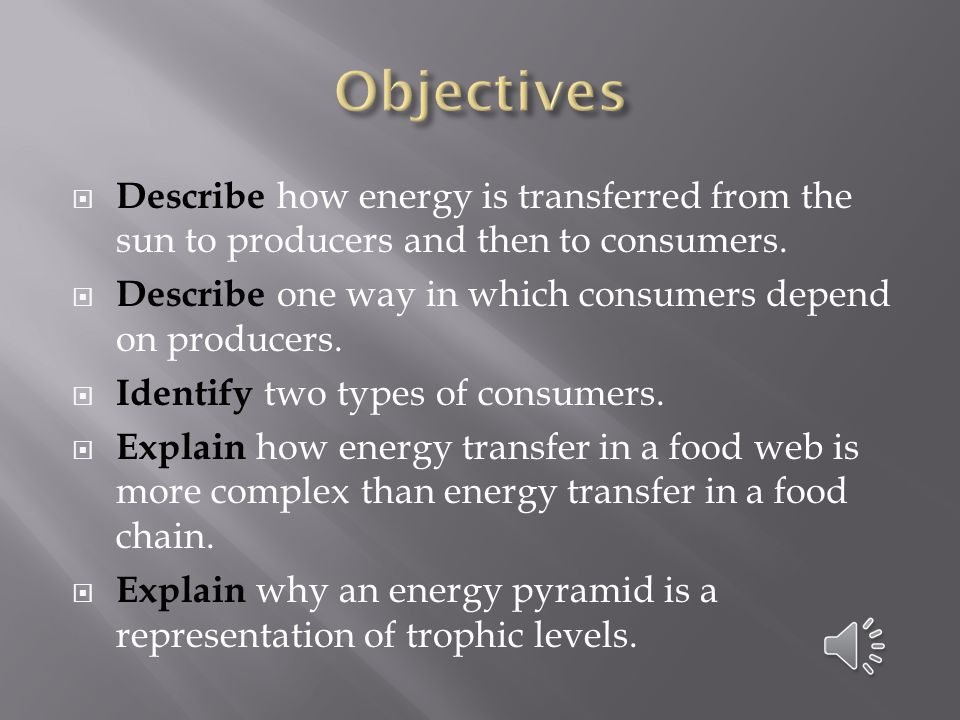  Describe how energy is transferred from the sun to producers and then to consumers.