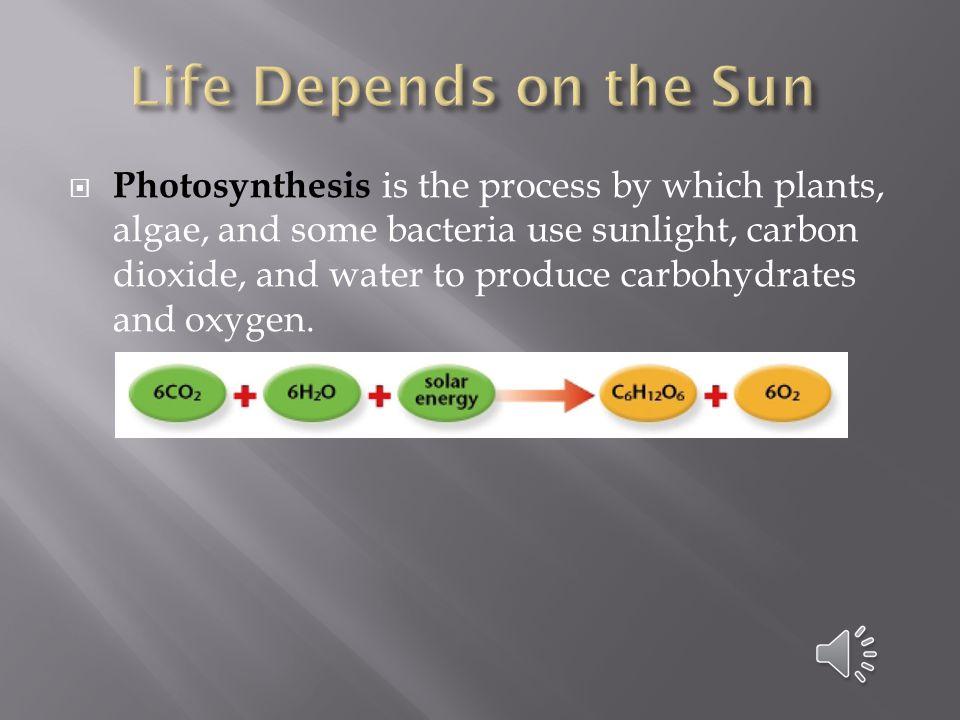  Each time an organism eats another organism, an energy transfer occurs.