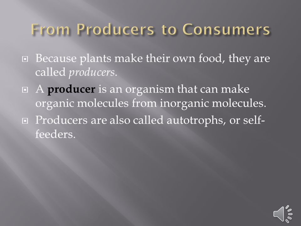  Because plants make their own food, they are called producers.