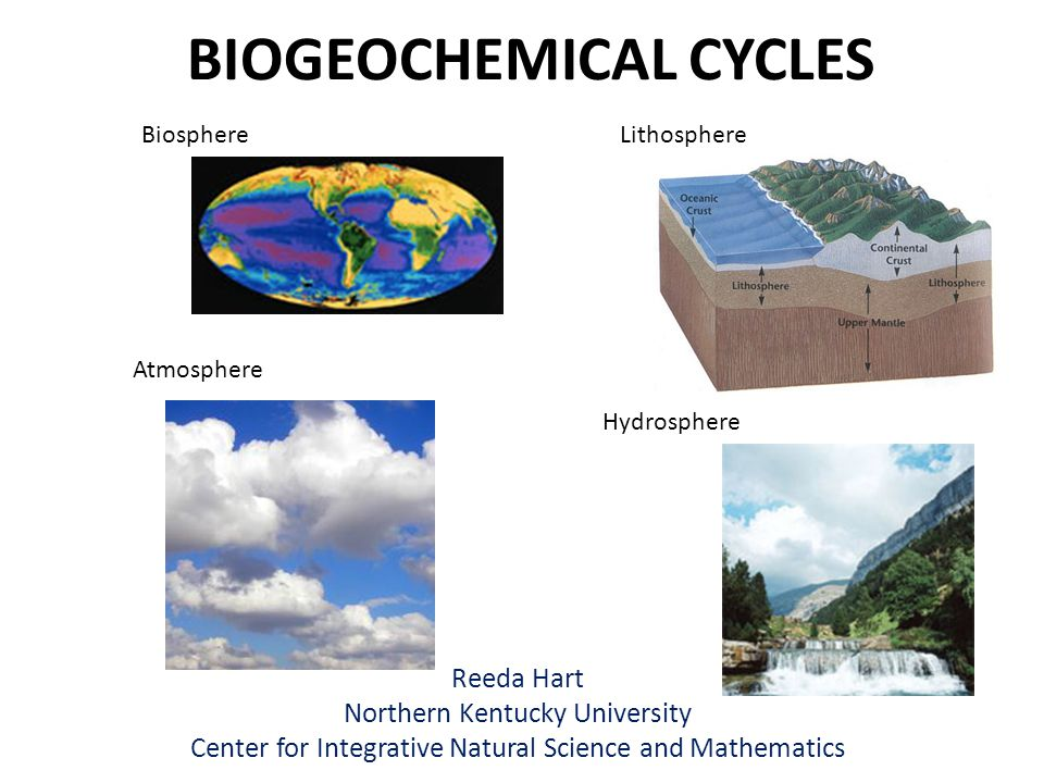 BIOGEOCHEMICAL CYCLES Reeda Hart Northern Kentucky University Center for Integrative Natural Science and Mathematics Lithosphere Hydrosphere Biosphere Atmosphere