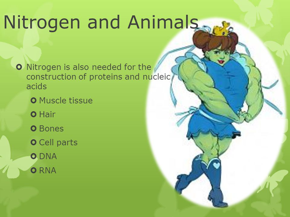 Nitrogen and Plants  Nitrogen is a chemical that plants need to grow well.