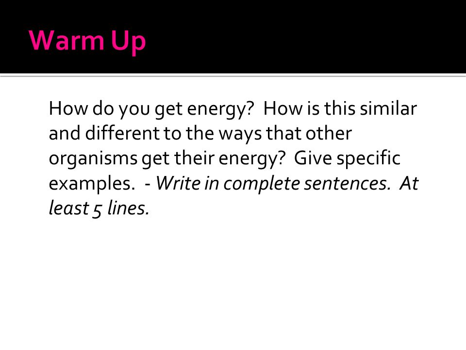 How do you get energy? How is this similar and different to the ways that other organisms get their energy? Give specific examples. - Write in complet