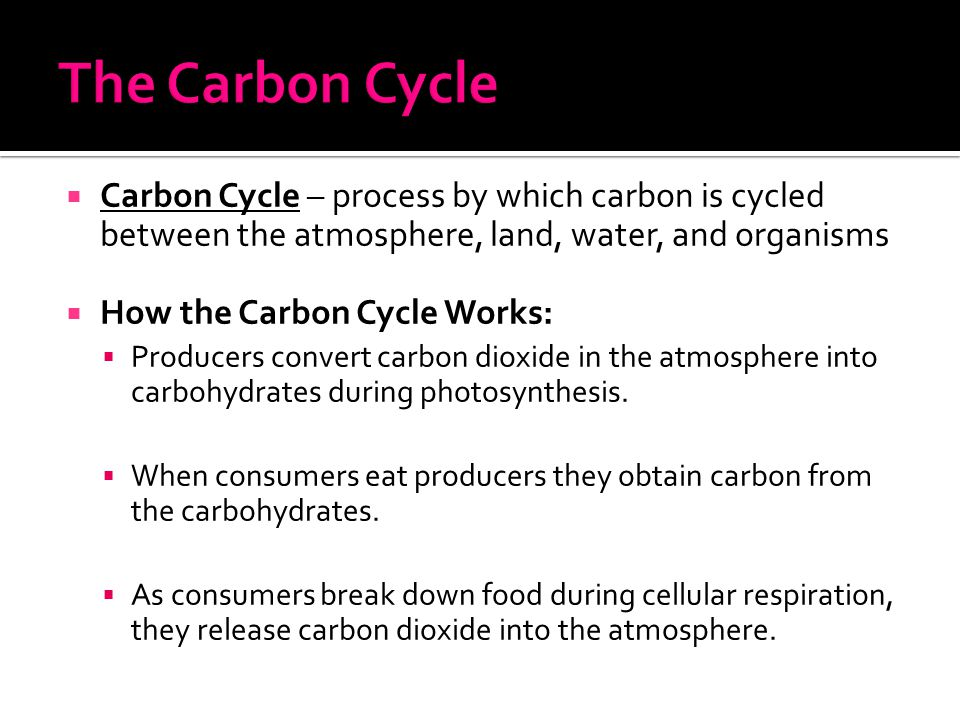  Carbon Cycle – process by which carbon is cycled between the atmosphere, land, water, and organisms  How the Carbon Cycle Works:  Producers conver