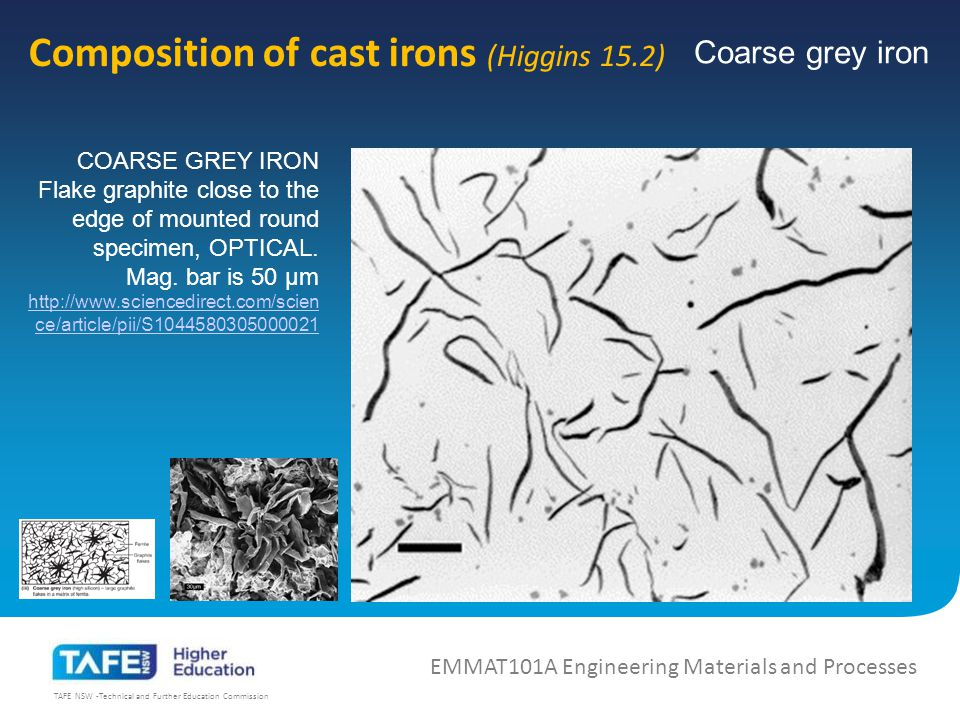 TAFE NSW -Technical and Further Education Commission Composition of cast irons (Higgins 15.2) EMMAT101A Engineering Materials and Processes COARSE GREY IRON Flake graphite close to the edge of mounted round specimen, OPTICAL.