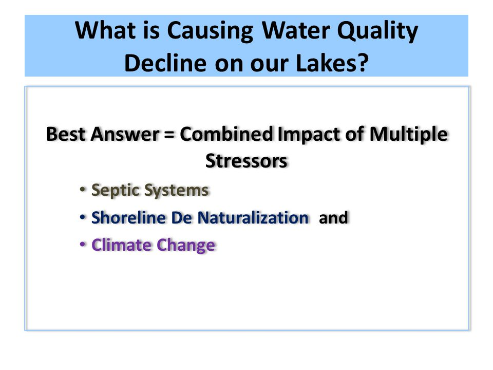 What is Causing Water Quality Decline on our Lakes.