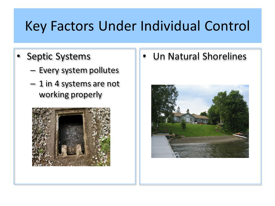Key Factors Under Individual Control Septic Systems – Every system pollutes – 1 in 4 systems are not working properly Septic Systems – Every system pollutes – 1 in 4 systems are not working properly Un Natural Shorelines