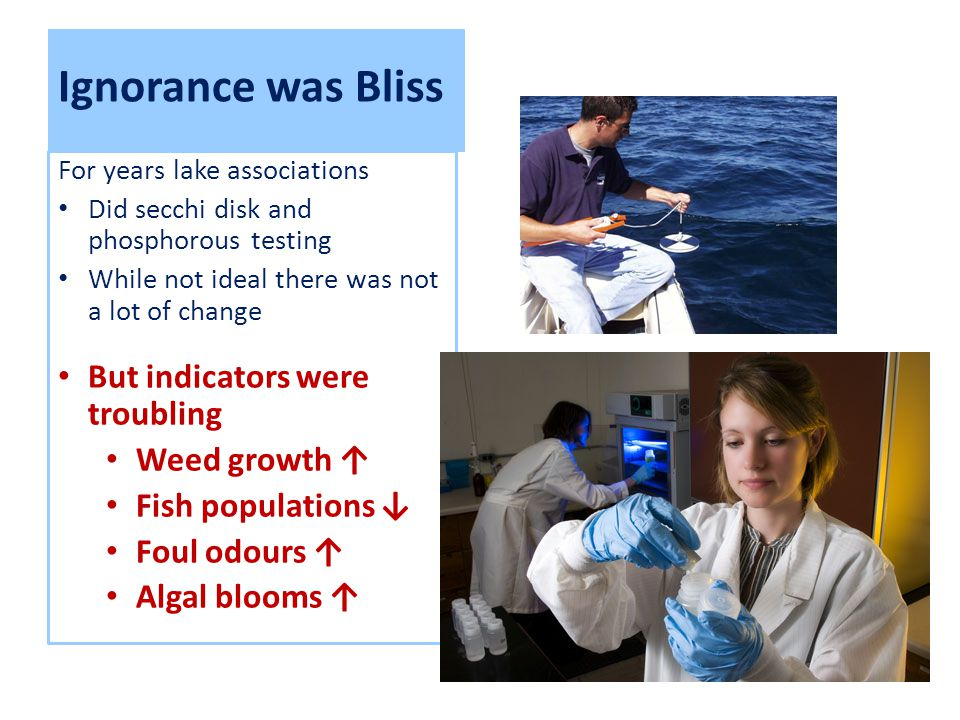 Ignorance was Bliss For years lake associations Did secchi disk and phosphorous testing While not ideal there was not a lot of change But indicators were troubling Weed growth ↑ Fish populations ↓ Foul odours ↑ Algal blooms ↑