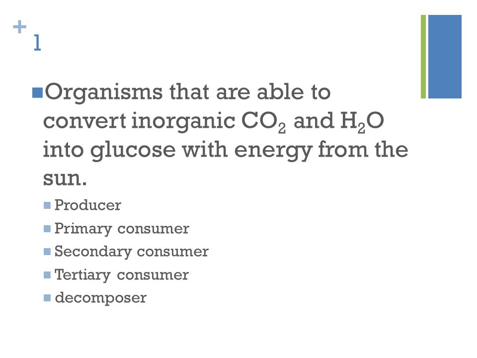 + 1 Organisms that are able to convert inorganic CO 2 and H 2 O into glucose with energy from the sun. Producer Primary consumer Secondary consumer Te