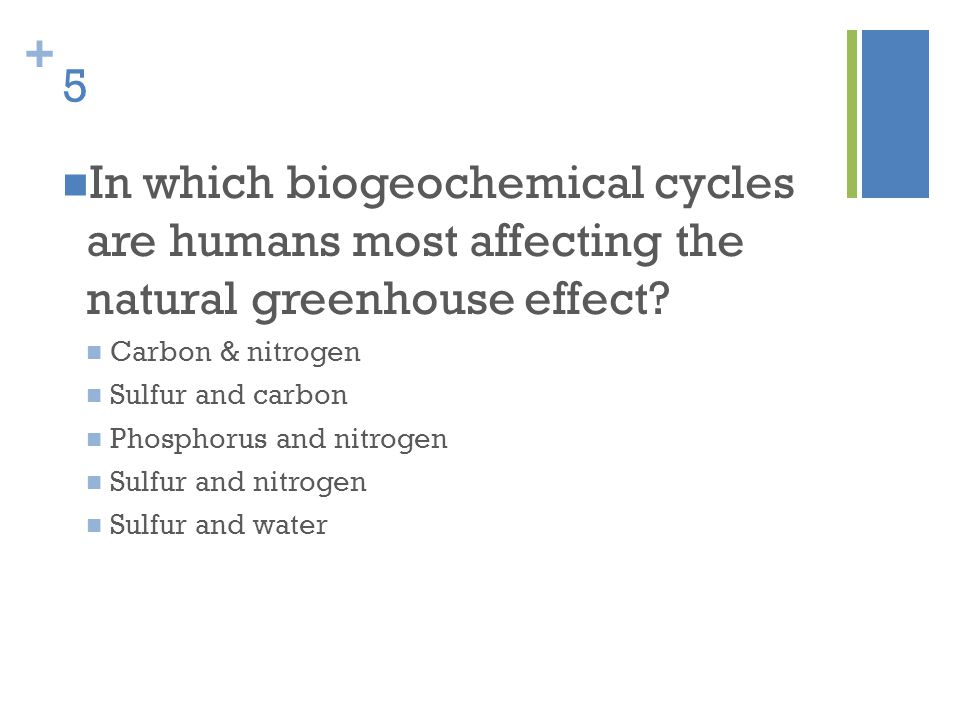 + 5 In which biogeochemical cycles are humans most affecting the natural greenhouse effect? Carbon & nitrogen Sulfur and carbon Phosphorus and nitroge