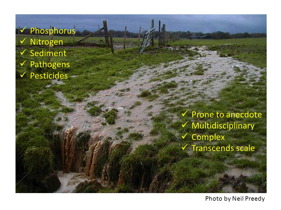 Photo by Neil Preedy Phosphorus Nitrogen Sediment Pathogens Pesticides Prone to anecdote Multidisciplinary Complex Transcends scale
