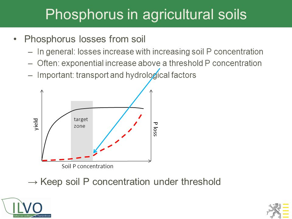 Phosphorus in agricultural soils 7 Phosphorus losses from soil –In general: losses increase with increasing soil P concentration –Often: exponential i