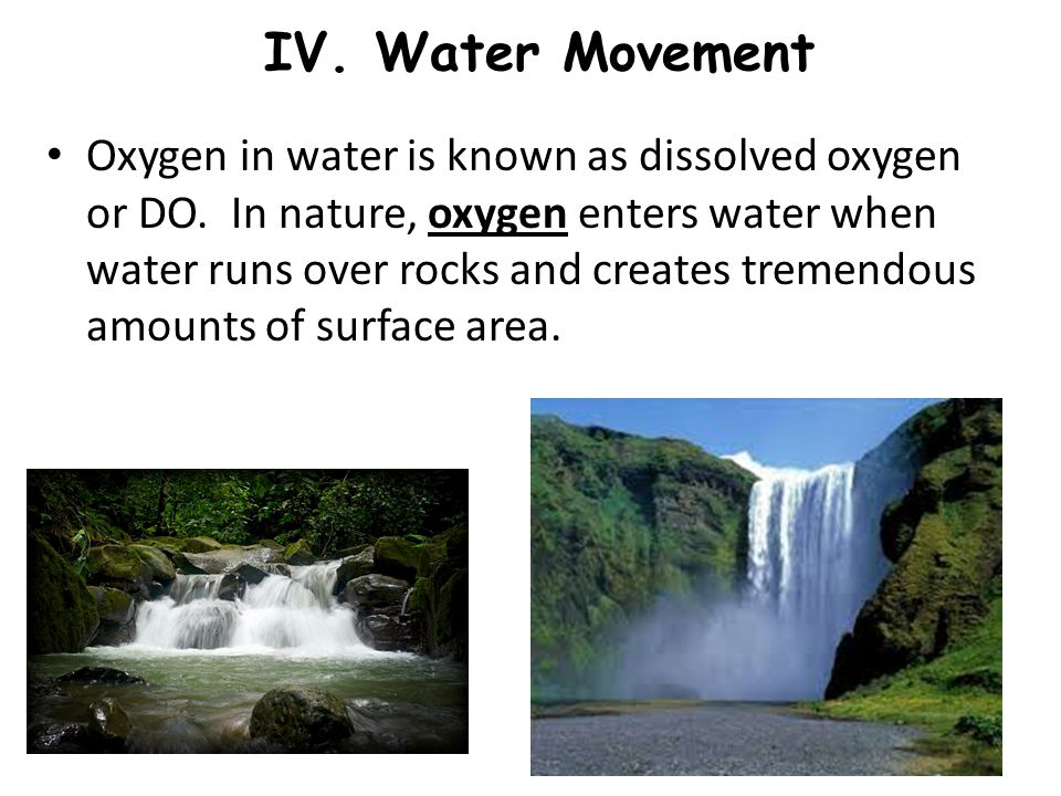 IV.Water Movement Oxygen in water is known as dissolved oxygen or DO.