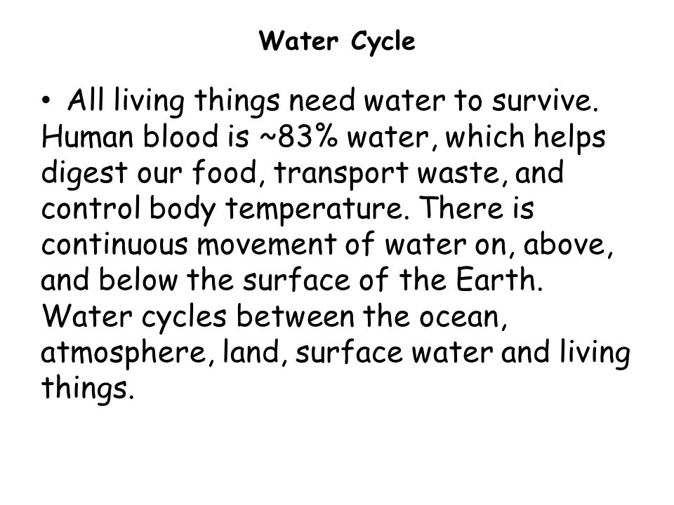 Water Cycle All living things need water to survive.