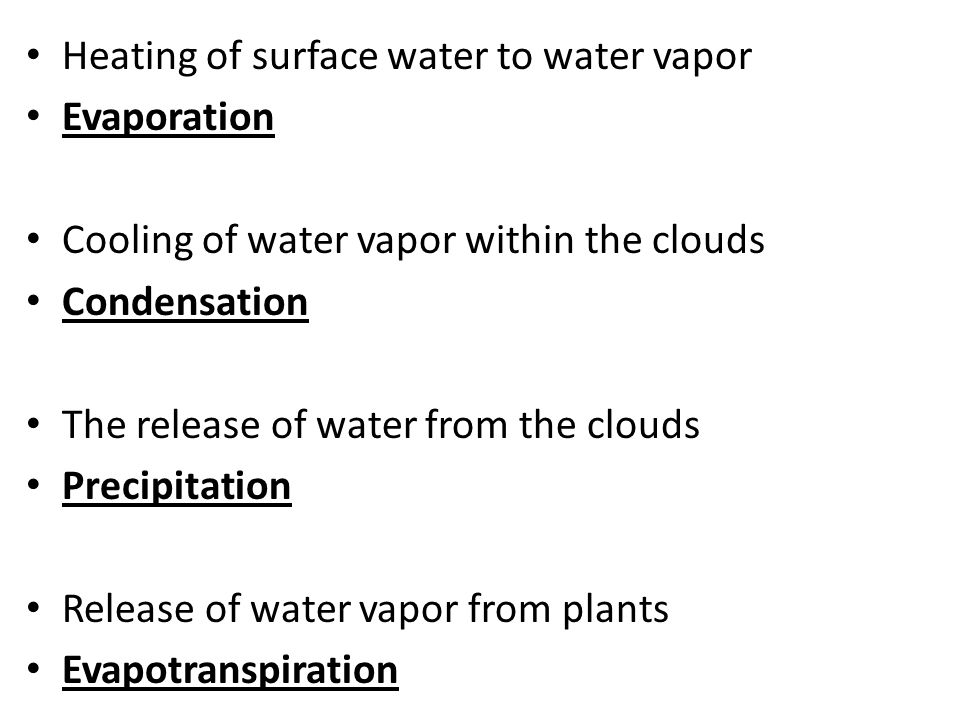 Heating of surface water to water vapor Evaporation Cooling of water vapor within the clouds Condensation The release of water from the clouds Precipitation Release of water vapor from plants Evapotranspiration