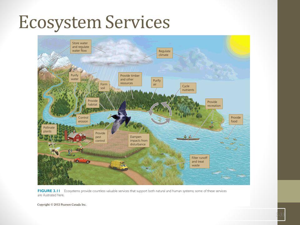 3-33 Ecosystem Services