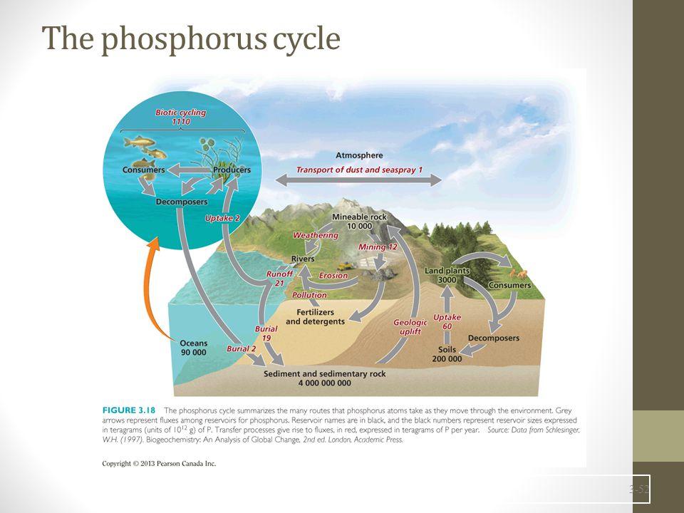 The phosphorus cycle 3-52