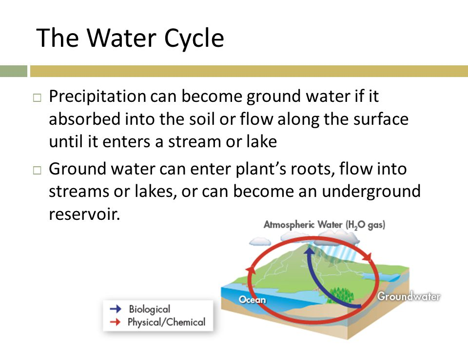 The Water Cycle  Precipitation can become ground water if it absorbed into the soil or flow along the surface until it enters a stream or lake  Grou