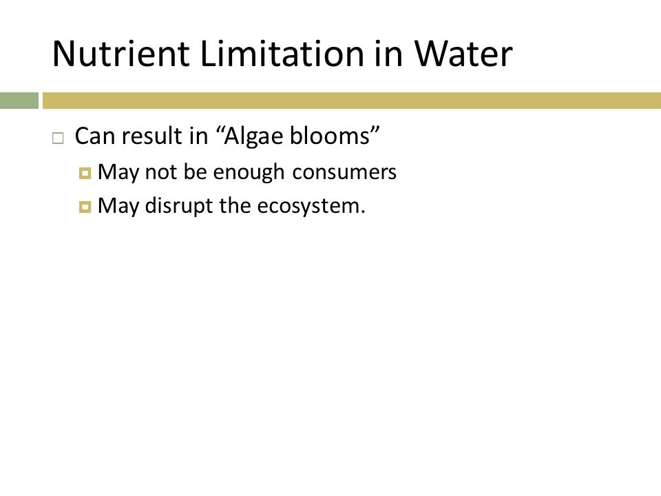 """Nutrient Limitation in Water  Can result in """"Algae blooms""""  May not be enough consumers  May disrupt the ecosystem."""
