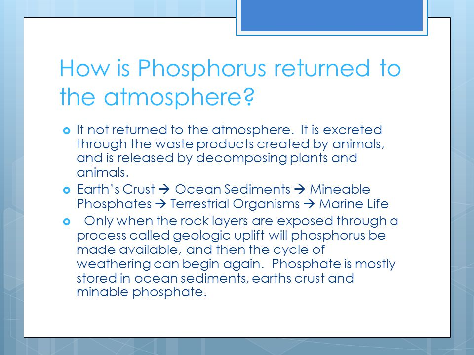 How is Phosphorus returned to the atmosphere?  It not returned to the atmosphere. It is excreted through the waste products created by animals, and i
