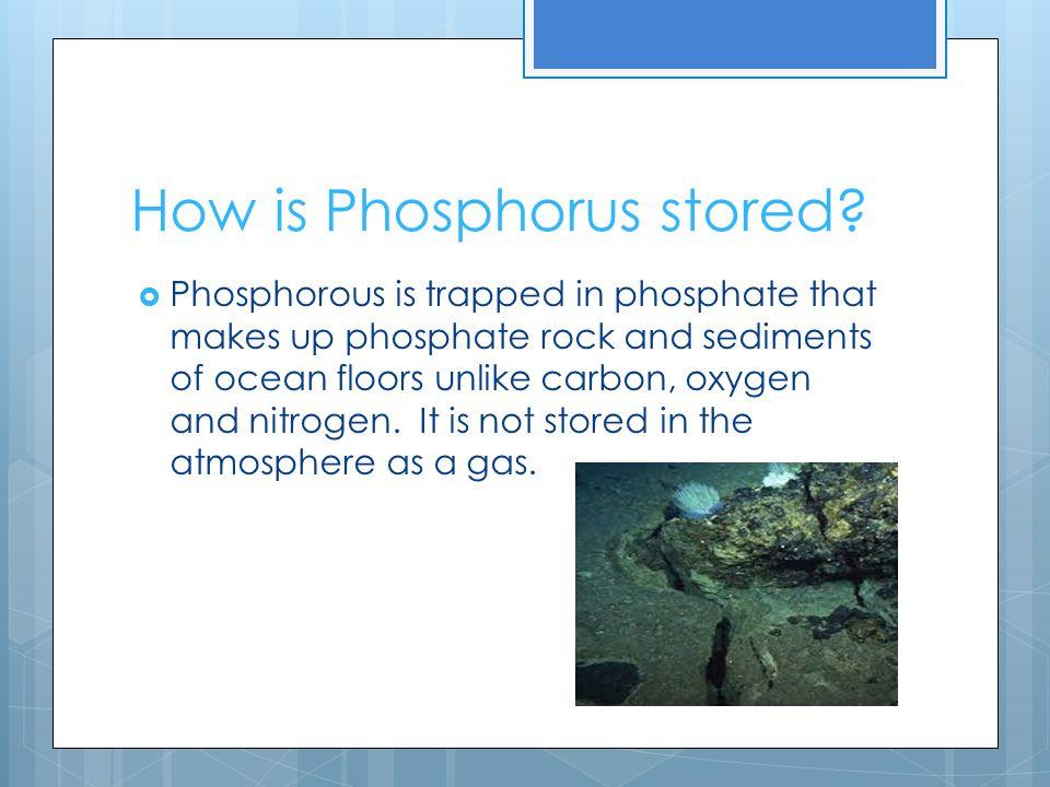 How is Phosphorus stored.