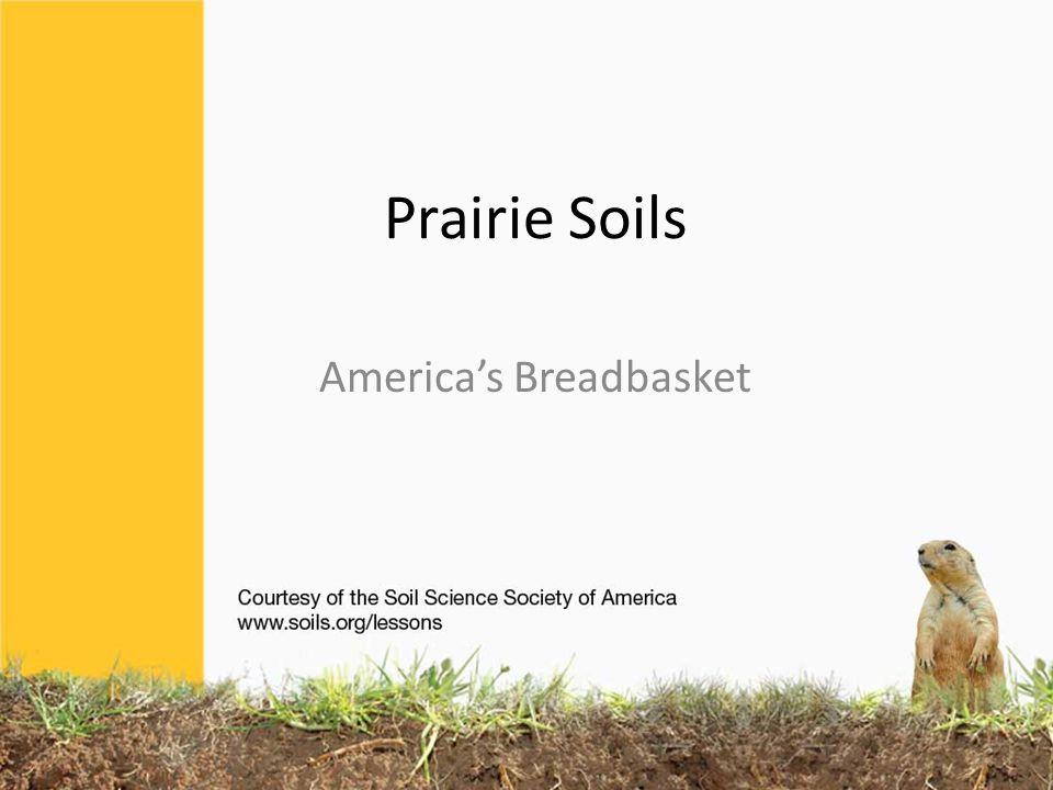 Prairie Soils America's Breadbasket