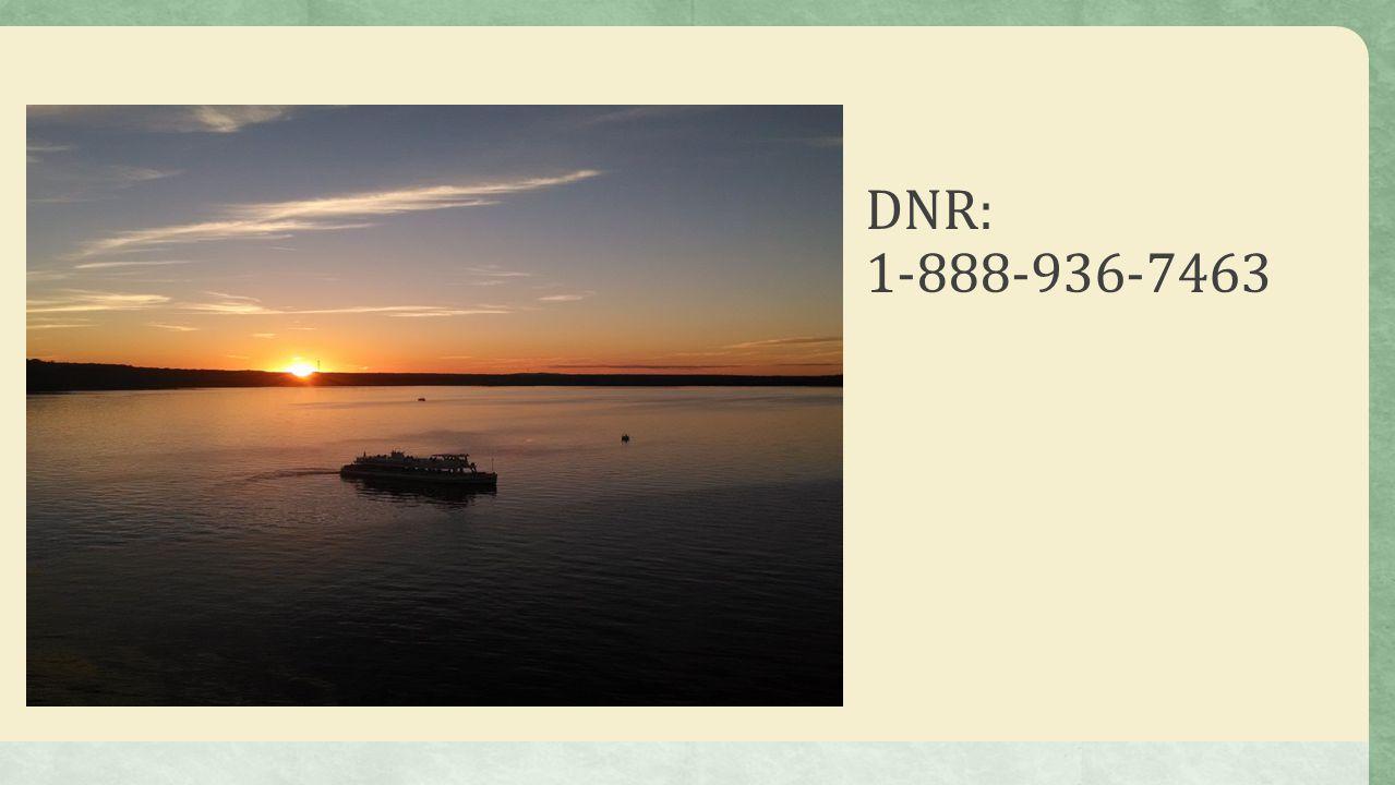 DNR: 1-888-936-7463