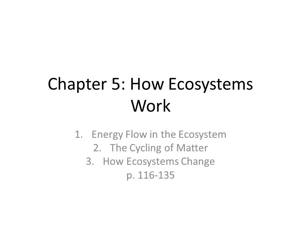 Chapter 5: How Ecosystems Work 1.Energy Flow in the Ecosystem 2.The Cycling of Matter 3.How Ecosystems Change p.