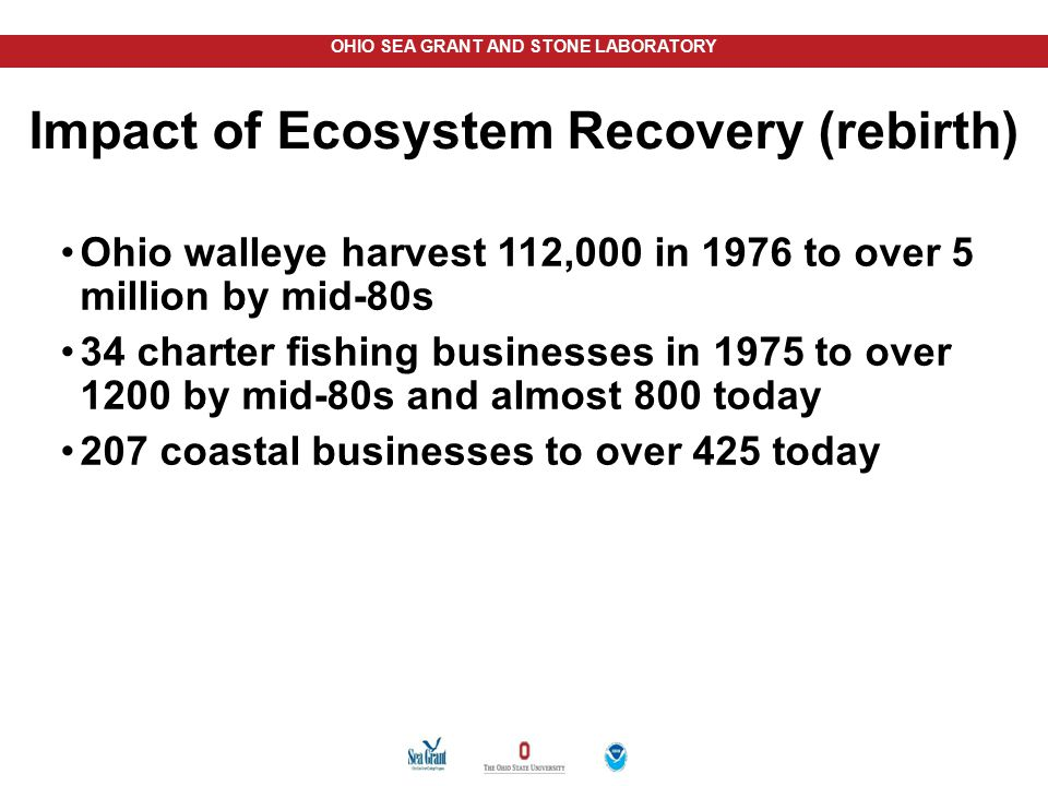 OHIO SEA GRANT AND STONE LABORATORY Impact of Ecosystem Recovery (rebirth) Ohio walleye harvest 112,000 in 1976 to over 5 million by mid-80s 34 charte